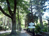 Poet's Lane, Sherbrooke