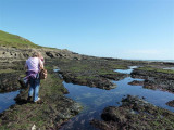 The seaweed was very slippery!
