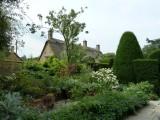 The Maple Garden