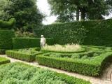 The Fuchsia Garden