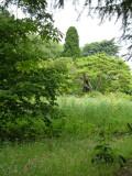 The Lower Stream garden