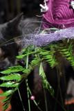 un bouquet 2