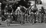 Road race, 1977 Nationals