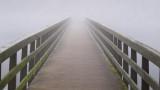 Morning Fog 10