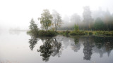 Vejlbo moor by morning 1
