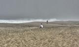 Meditation on a foggy beach