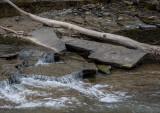 Upper Buttermilk Creek