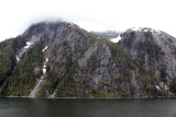 Day 3 (Tracy Arm)
