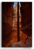 Wall Streeet Canyon