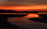 #100  Blackwater Sunrise