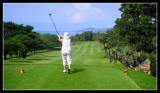 Gill - Southbroom Golf Club