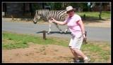 Gill and Zebra