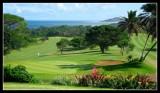 Southbroom Golf Club - by Gill