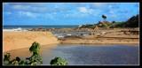 Shelly Beach - by Gill
