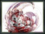 Graphisme-1050163F.jpg