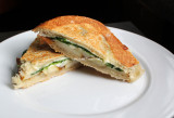 bianca panini