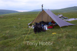 Second Wild Camp on Dartmoor - 11.6.12
