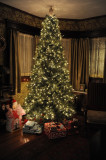Merry Christmas dear friends 843.jpg