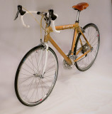 Gallery: Paul & David's Bamboo Bike