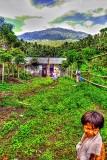 North Sulawesi & Manado