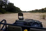 Timbavati river bed at Ngala
