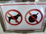 No dogs no durian