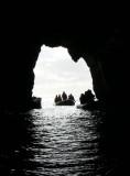1 Snares Islands P1060952.jpg