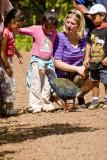 Takahe with kids