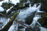 Frozen Swiftwater Cascading down Sugar Creek tb0311sar.jpg