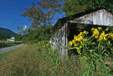 Wooden Structure and Barn Upper Greenbrier Valley tb0811htx.jpg