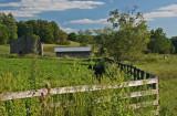 Bright Farm Scene in Greenbrier Valley tb0811kfx.jpg