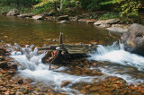 Swiftwater Channeling thru Logs and Stones tb0911tdx.jpg