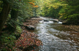 Downstream Early Fall Stream in North Cherry tb1010skr.jpg