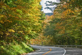 Early Autumn Colors in North Fork Road Scene tb1010sir.jpg