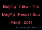 Beijing, China - The Beijing (Panda) Zoo (March 2011)