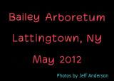 Bailey Arboretum, Lattingtown, NY (May 2012)