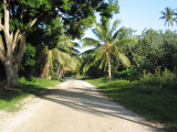 Drive to our beachside cabin 031.jpg