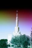 LDS Temple in Denver