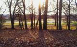 Kissena Park sunset