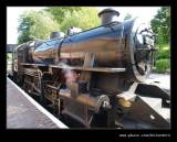 Arley Station #19