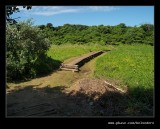 Umhlanga Nature Reserve, nr Durban, KZN, South Africa