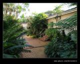 Botanic Garden #01, Durban, KZN, South Africa