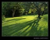 Botanic Garden #13, Durban, KZN, South Africa