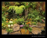 Botanic Garden #14, Durban, KZN, South Africa