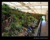 Botanic Garden #20, Durban, KZN, South Africa