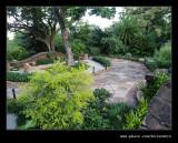 Botanic Garden #24, Durban, KZN, South Africa