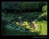 Makaranga Garden #08, Kloof, KZN, South Africa