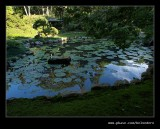 Makaranga Garden #09, Kloof, KZN, South Africa