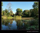 Botanical Garden #03, Pietermaritzburg, KZN, South Africa