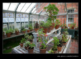 Sunnycroft Victorian Villa #20